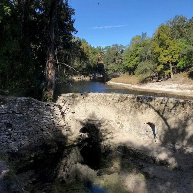 Wide Shot of Suwannee Springs